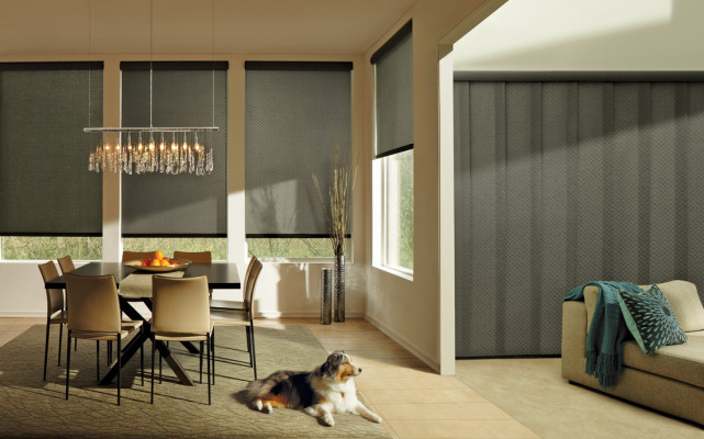 Skyline Panels and Designer Roller Shades