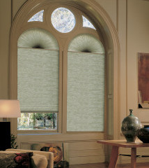 Duette Arched Window