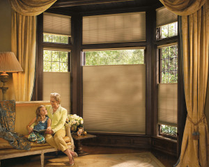 Honeycomb shades in Flagstaff Arizona